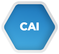 CAI - The A-Z of eLearning Acronyms (With bonus explanations from experts) | TalentLMS Blog